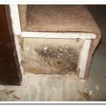 staircase-mold