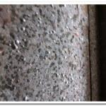 mold-close-up