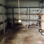 basement-mold