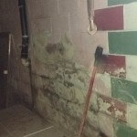 mold-in-basement